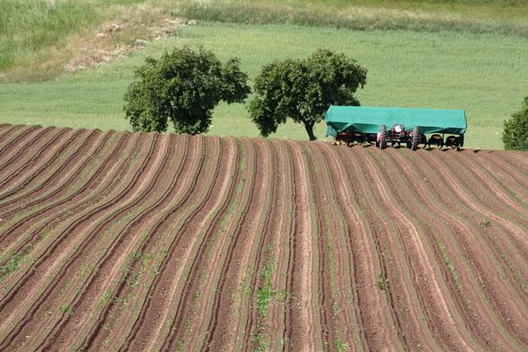 agricultural-tarp