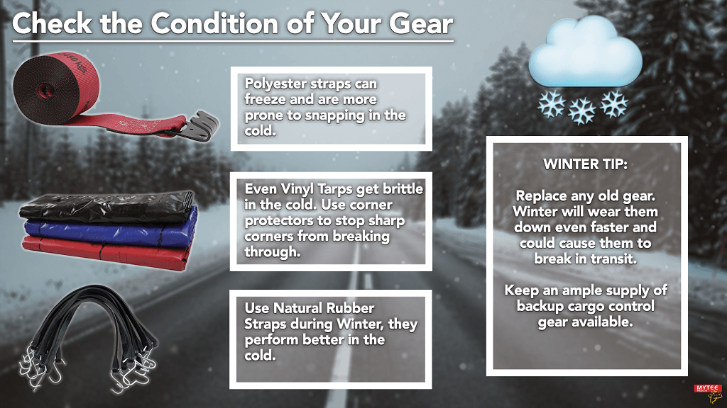 Check the Condition of Winter Inventory
