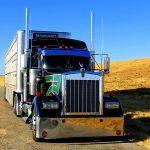 Trucking in summer